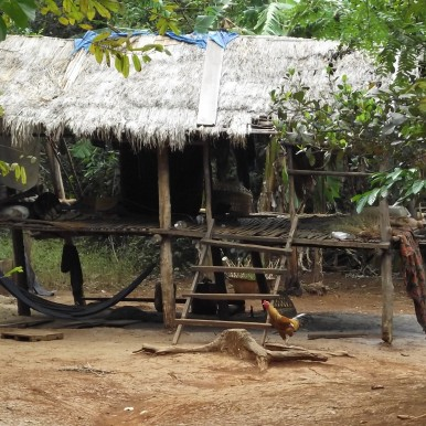 hut in Elephant Valley, Moldulkiri, Cambodia