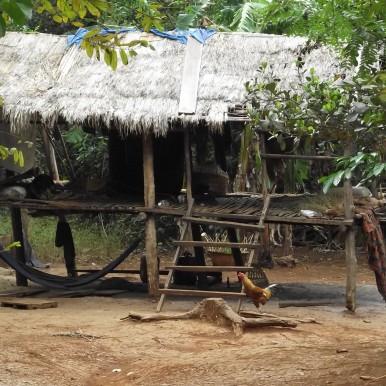 hut in Elephant Valley, Moldulkiri, Cambodia