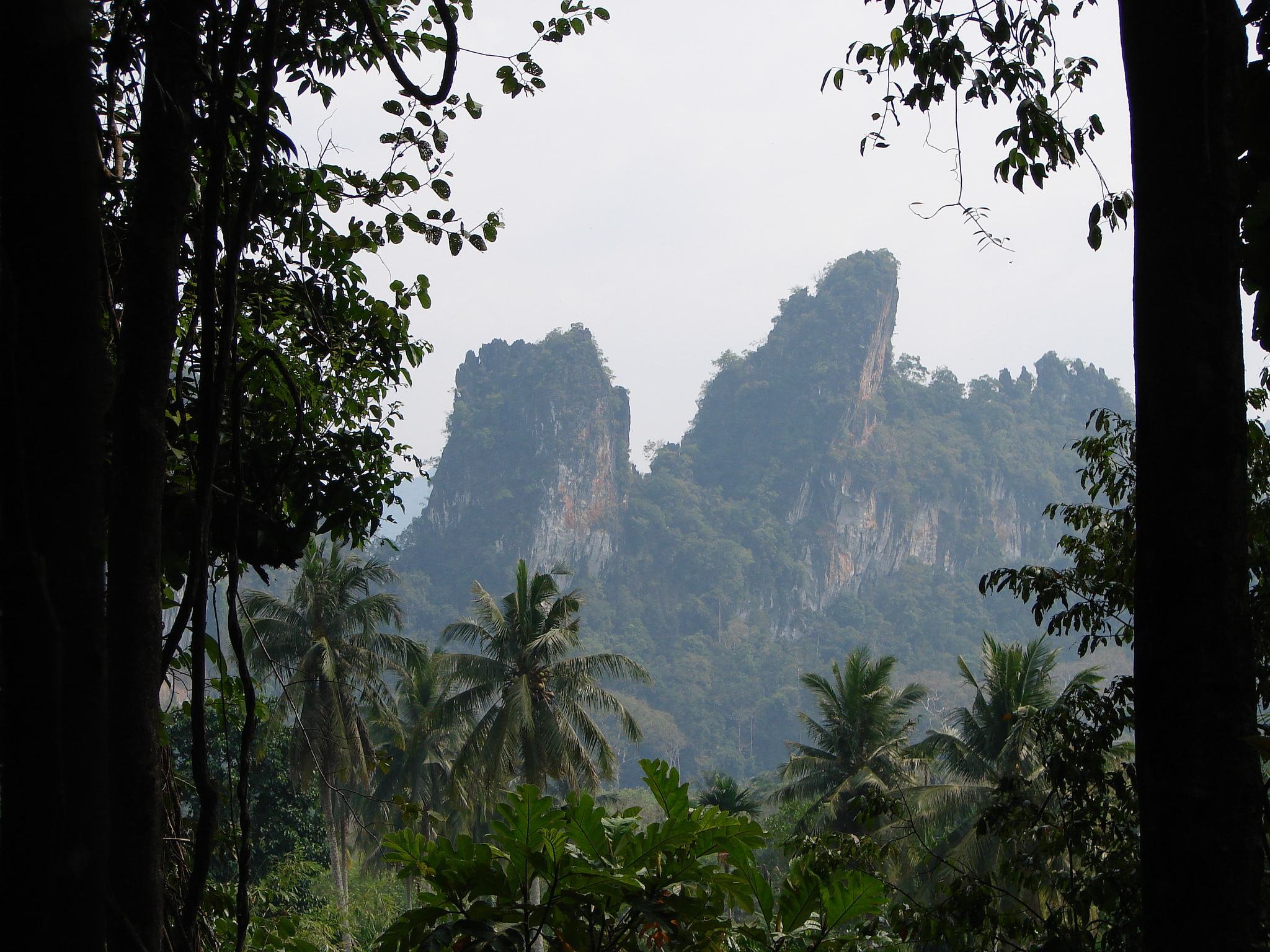 Review of Our Jungle House eco lodge, Khao Sok, Thailand ...