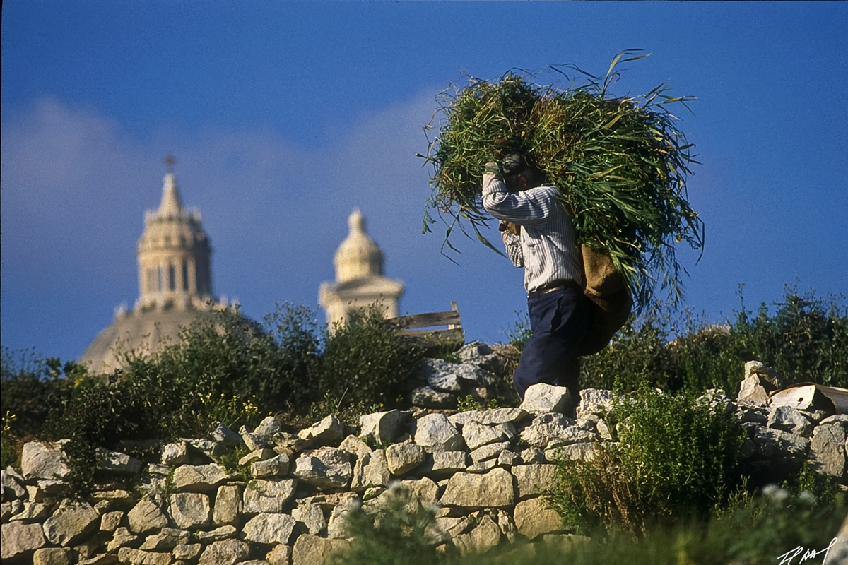 An eco-lovers' guide to Gozo