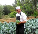 Kitchen Garden at Hotel Phoenicia