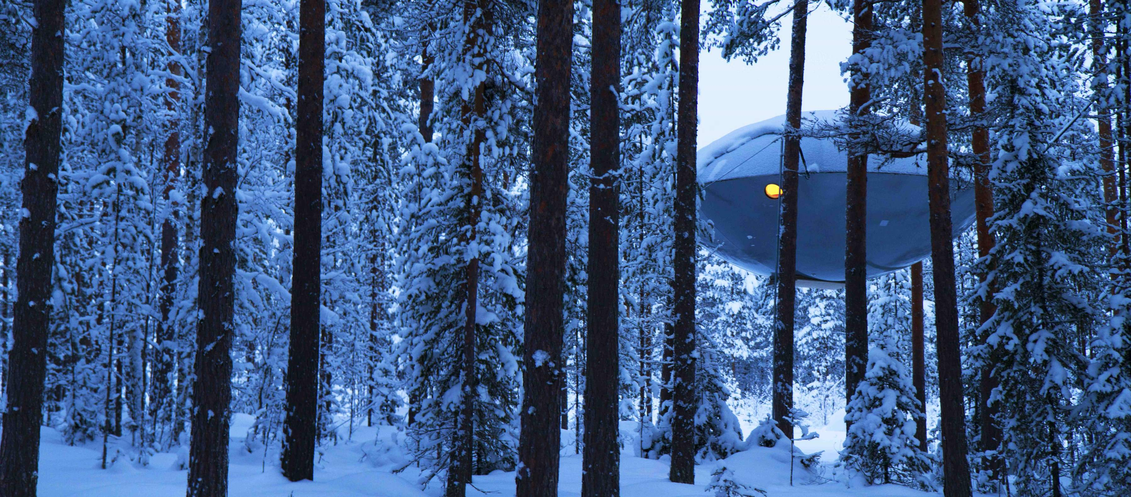 nest in sweden 39 s treehotel this winter goodtrippers. Black Bedroom Furniture Sets. Home Design Ideas