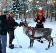 Meet the Sami, Sweden