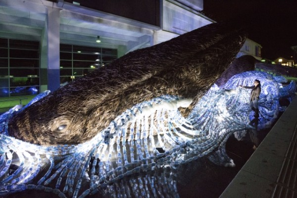 The Bristol Whales, with artist Sue Lipscombe from Cod Steaks