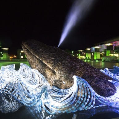 Two life size whales, made from Somerset willow and 70,000 upcycled plastic bottles, are unveiled in Bristol - European Green Capital