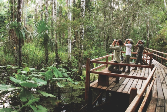 Family adventures in nature's wonderland, Inkaterra Peru