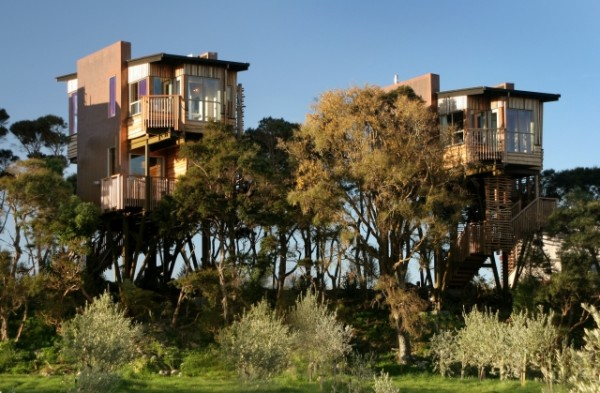Luxury treehouse accommodation on the tour