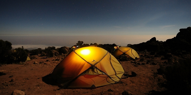 A camping style survival guide