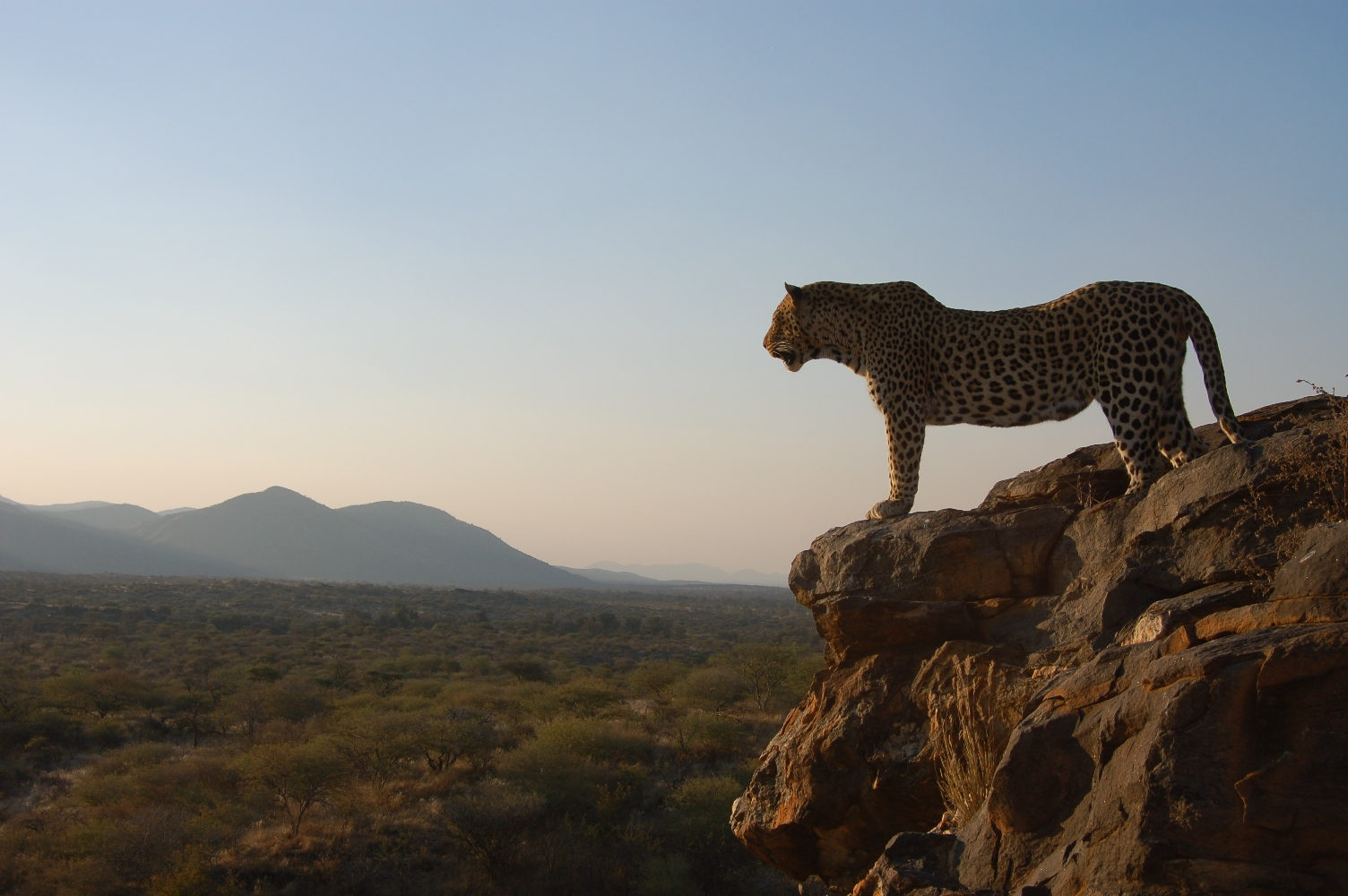 Namibia: Volunteering in the world's largest conservation area