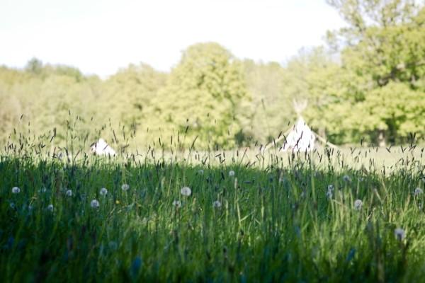 meadows at Camp Katur, Yorkshire