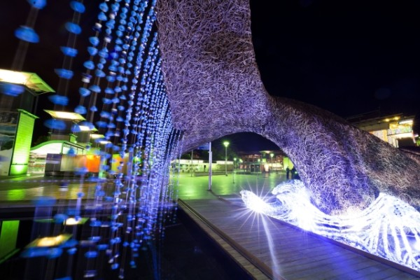 Two life size whales, made from Somerset willow and 70,000 upcycled plastic bottles, are unveiled in Bristol - European Green Capital 2