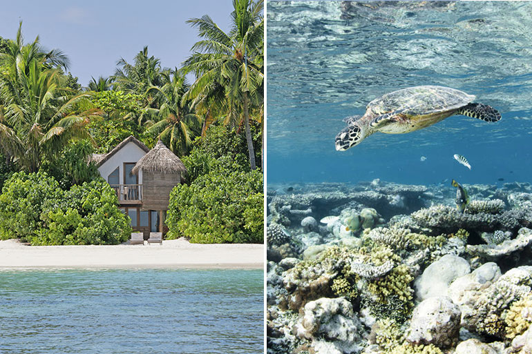 3 of the best luxury eco retreats in the Maldives